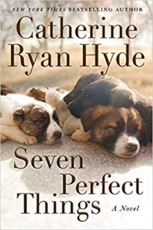 seven perfect things by catherine ryan hyde