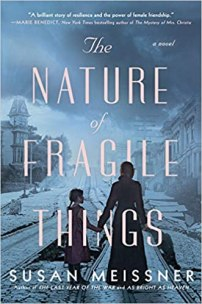 nature of fragile things by susan meissner