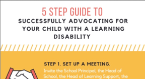 Reading Ropes 5 Step Learning Disability Advocacy Guide