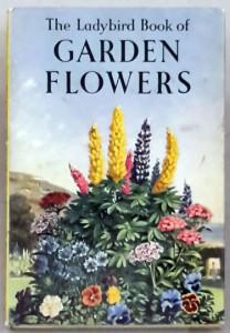 garden-flowers-