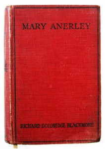 mary-anerly-book
