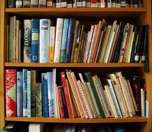 sheila-book-shelf-2