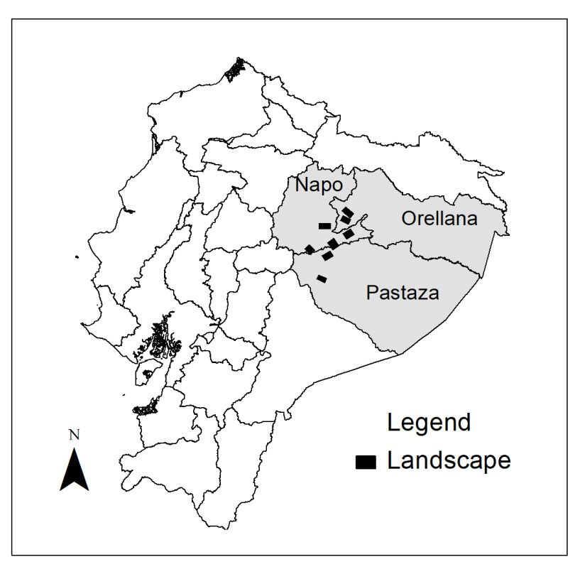 Degradation of Ecosystem Services and Deforestation in