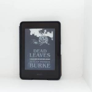 Read Remark book review - Dead Leaves by Kealan Patrick Burke