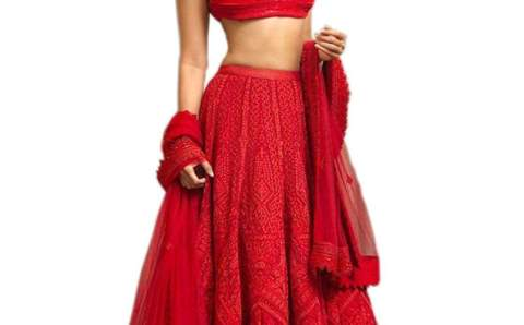 Best Women Fashion Georgette Lehenga Choli