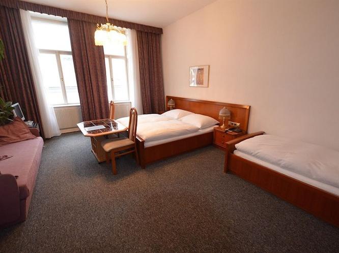 hotel-pension-lumes-viena-010