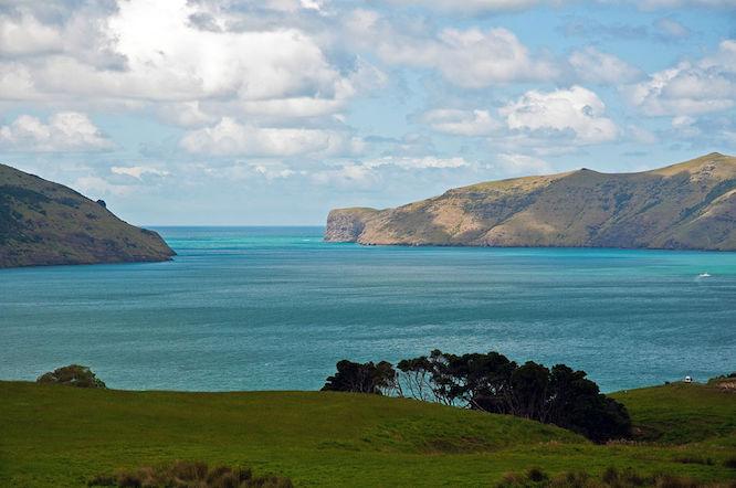 NZ Akaroa Harbour