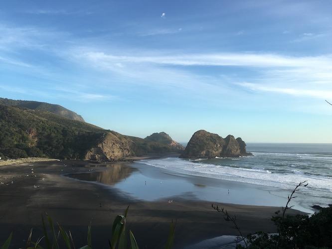NZ Piha Beach View From Lion Rock