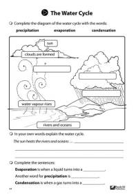 Junior Scientists Book 2 The Water Cycle Activity Sheet