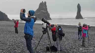 """Polowanie"" na puffiny, Vik - Islandia"