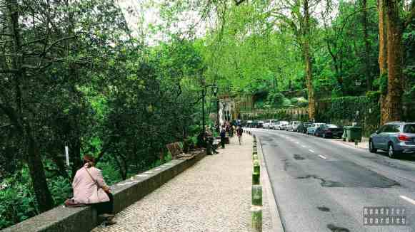 Droga do Pałacu Narodowego w Sintrze