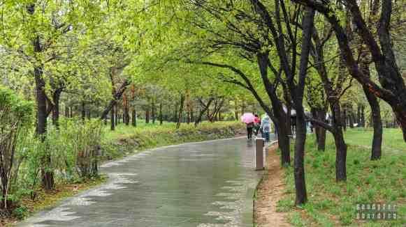 Dojście do Armii Terakotowej, Xian, Chiny