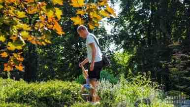 Alpinarium w Arboretum w Rogowie