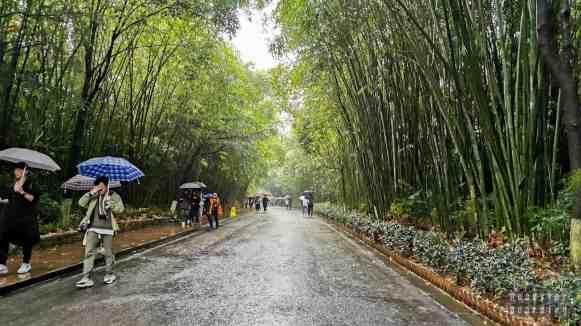 Chengdu, Chiny - Pandy i wiele więcej!
