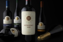 vino strido