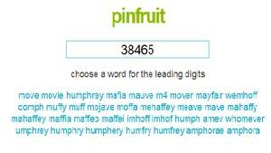 Pinfruit - handy memory improvement software