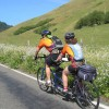 Road Bike Tours in California — UDCTOURS Pacific Coast springtime