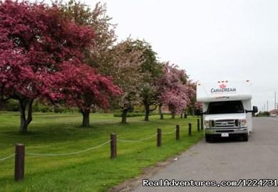 Ontario Rv Rentals Sales Toronto Canada Motorhome