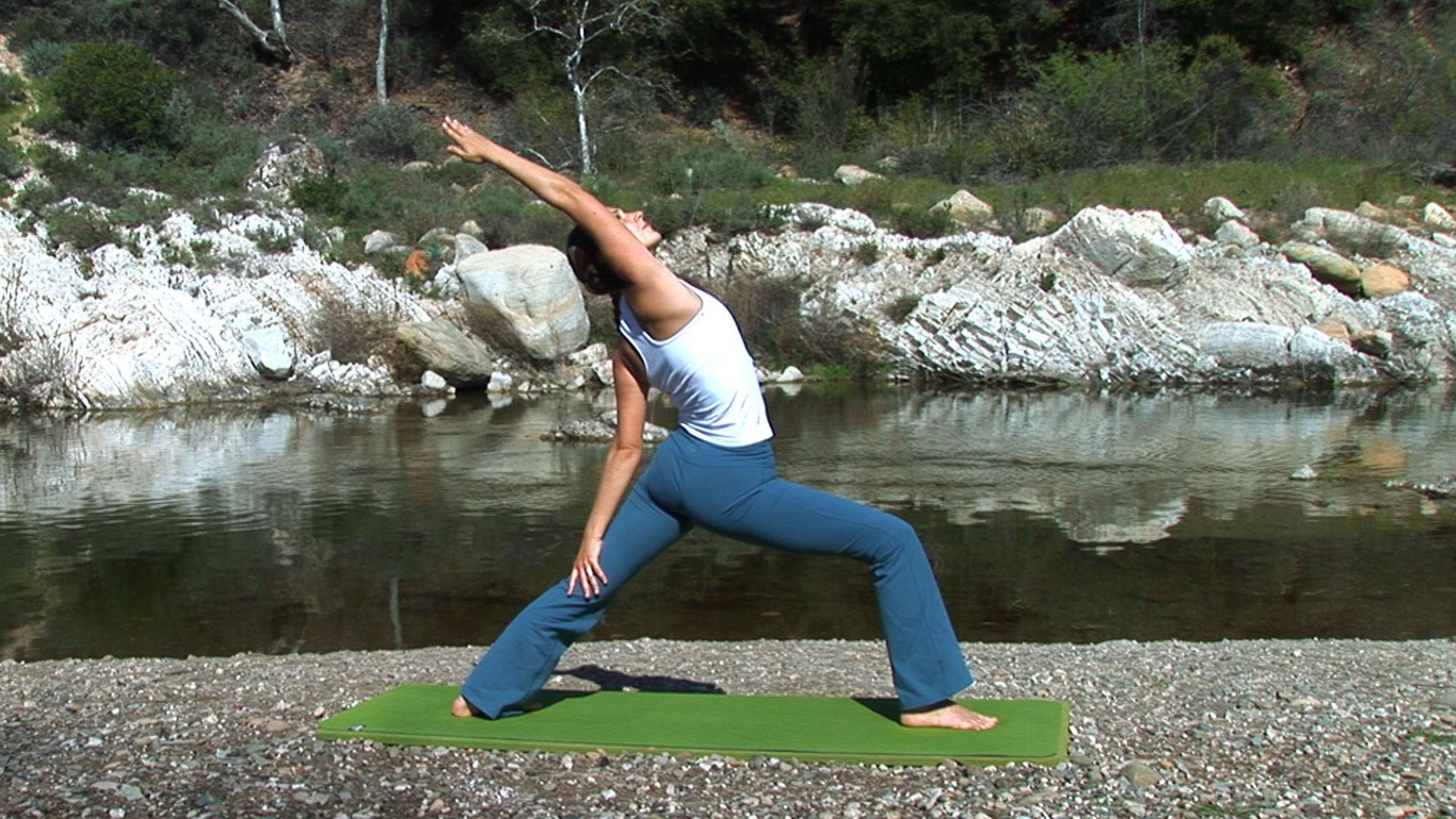 Yoga Flow DVD video  Real Bodywork