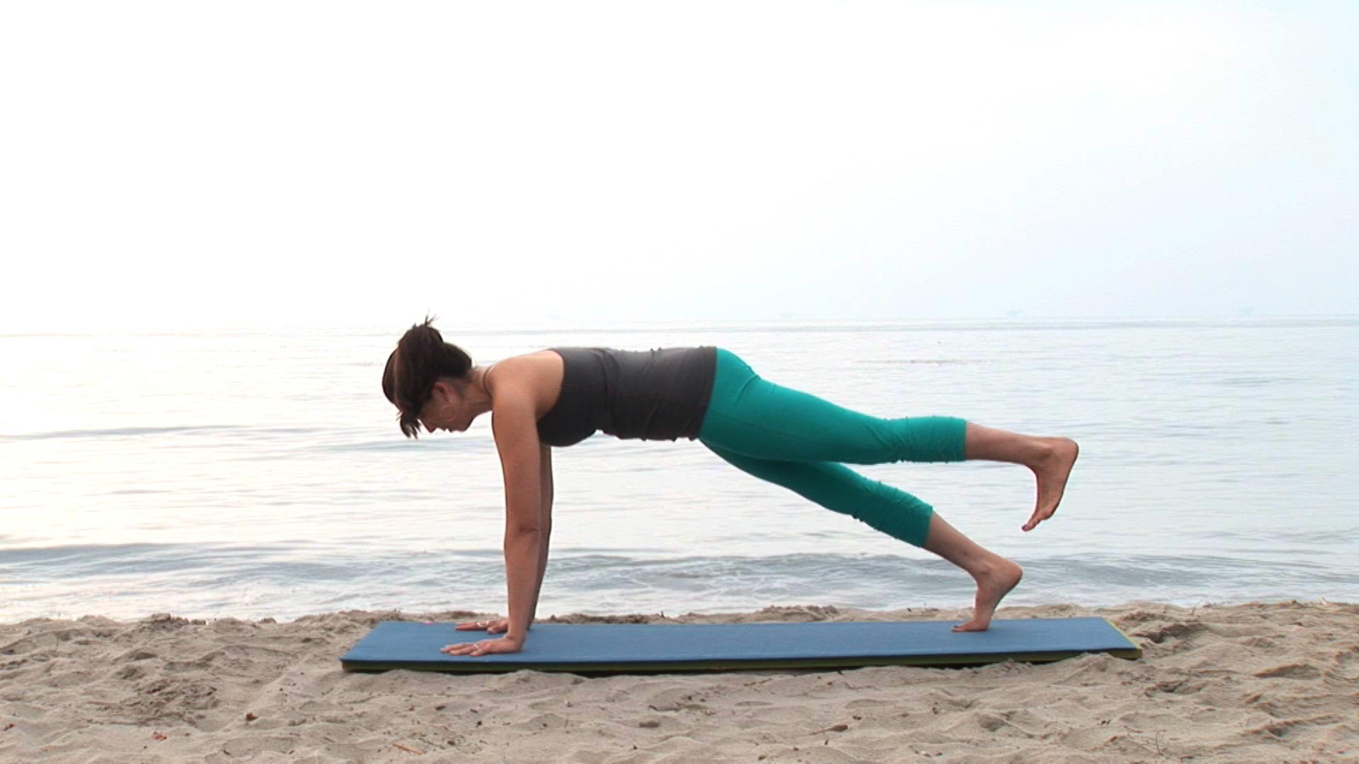 Strong Vinyasa Flow Yoga DVD video  Real Bodywork