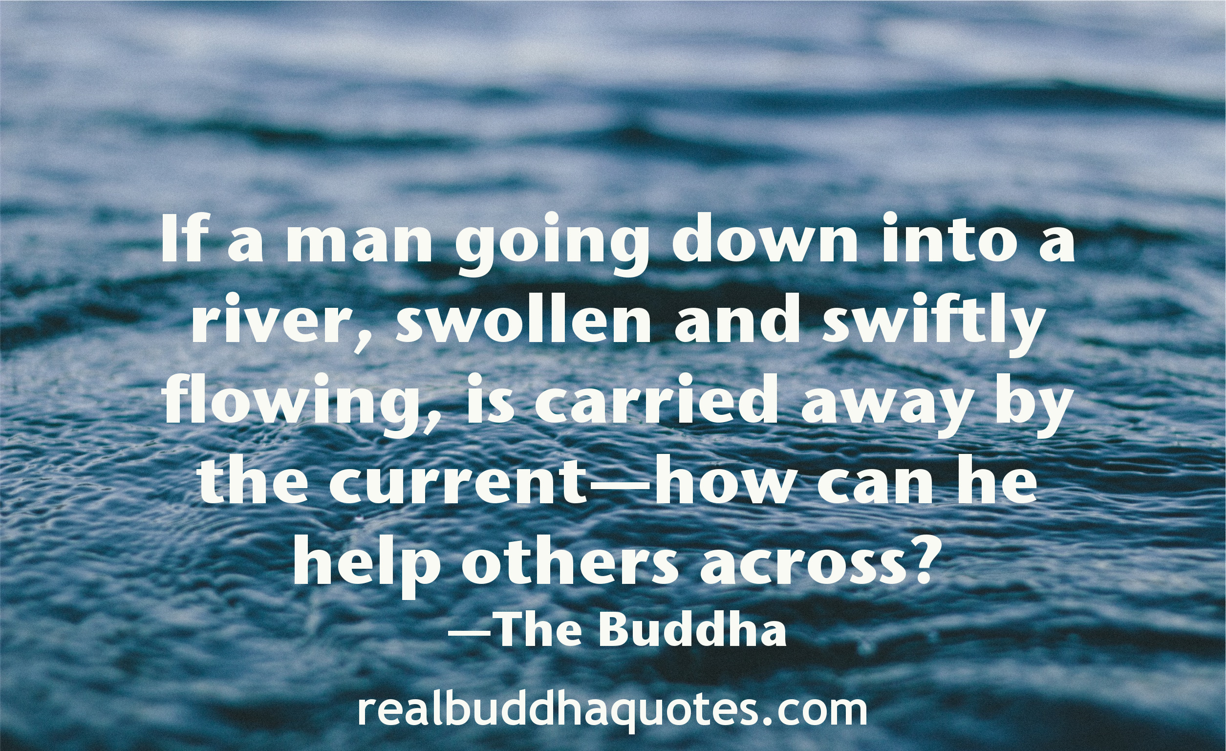 Real Buddha Quotes Delectable Buddha Quotes On Love Compassion Quotes Picture