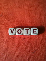 Elections 2011 – What's on Your Ballot?