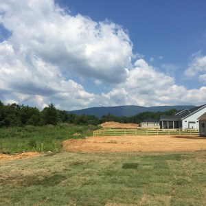 View from new construction home in Crozet