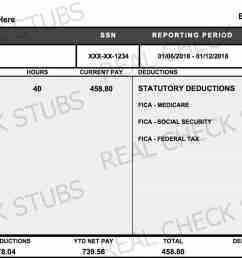real paycheck stubs create stub  [ 1510 x 785 Pixel ]