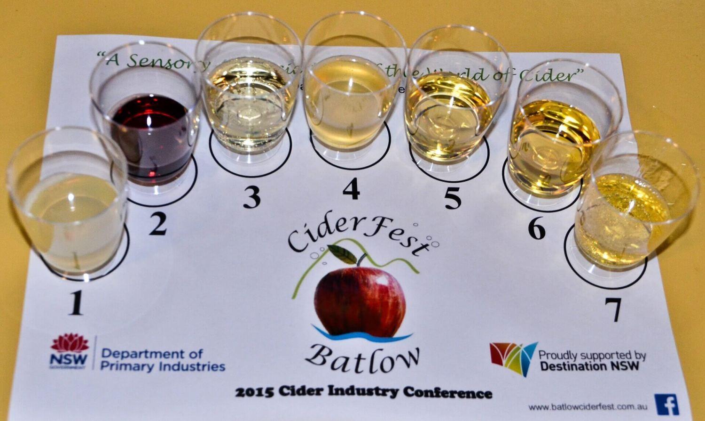 CiderFest tasting