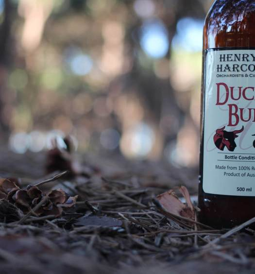 Duck And Bull Cider By Henry of Harcourt