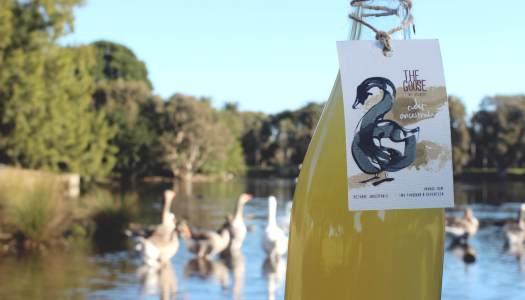 The Goose Cider Ancestrale
