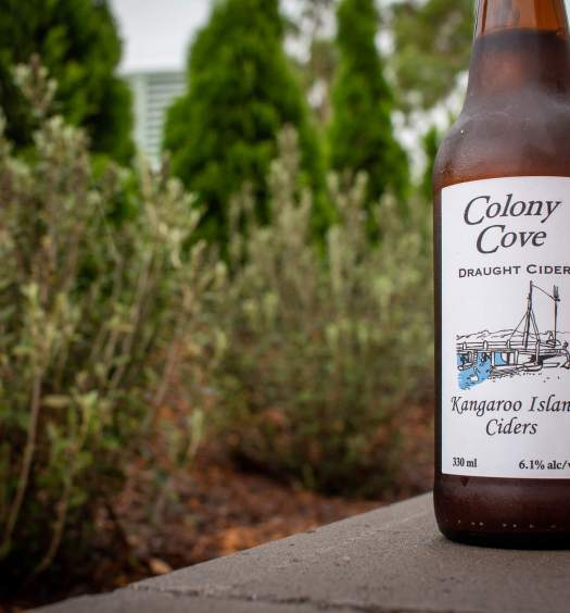 a bottle of Colony Cove Draught Cider by Kangaroo Island Ciders