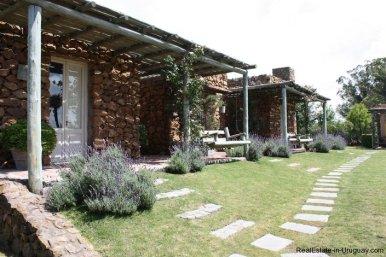4303-Cozy-Spectacular-Modern-Inn-in-El-Chorro-by-Punta-Piedras-801