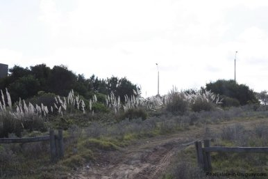 4532-Seafront-Plots-in-Manantiales-by-Bikini-Beach-960