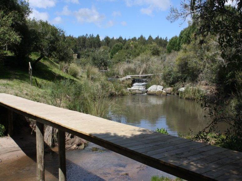 4636-River-in-New-Chacra-near-Garzon