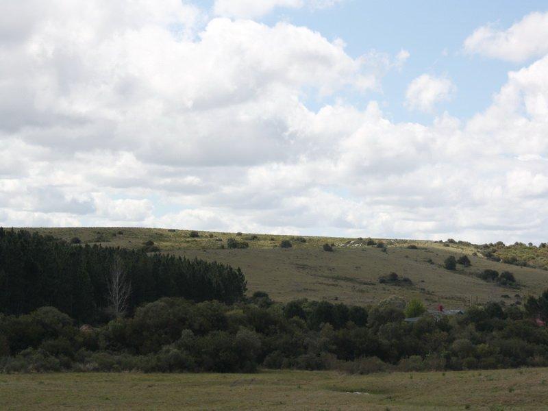 4636-Views-of-New-Chacra-near-Garzon