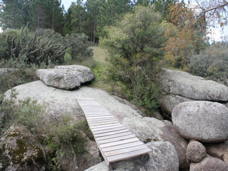 4636-bridge-of-new-chacra-near-garzon