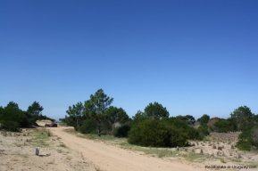 4880-Magnificent-elevated-Plot-overlooking-Jose-Ignacio-Lighthouse-and-Sea-1268