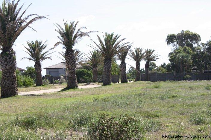 4514-Plot-of-Land-in-Santa-Monica-just-minutes-before-Jose-Ignacio-2131