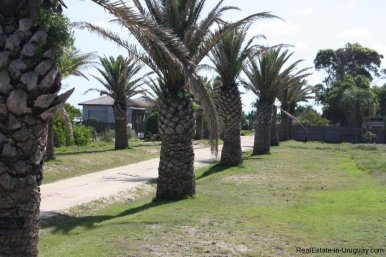4514-Plot-of-Land-in-Santa-Monica-just-minutes-before-Jose-Ignacio-2134