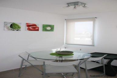 4543-Modern-Penthouse-with-360-Degree-Views-on-Playa-Brava-1974