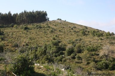 4590-50-Hectare-Field-in-the-Sierra-Hills-by-Garzon-1880