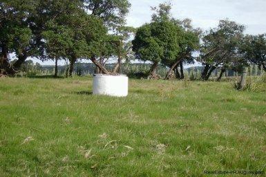 4795-Incredible-Campo-Land-in-Elevated-Area-in-Rinco-del-Anastasio-near-Jose-Ignacio-1833