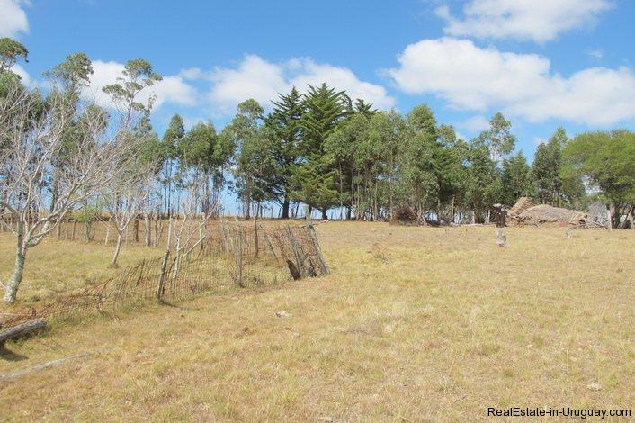 4797-Attractive-Ranch-Land-with-small-School-close-to-Jose-Ignacio-1743