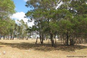 4797-Attractive-Ranch-Land-with-small-School-close-to-Jose-Ignacio-1751