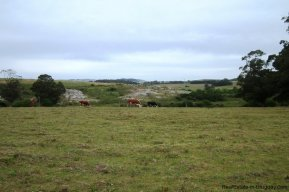4881-Small-Ranch-and-Land-on-Laguna-del-Sauce-1740