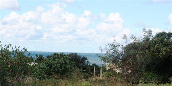 4877-Modern-Home-between-the-Lagoon-and-the-Sea-in-Santa-Monica-by-Jose-Ignacio-2230