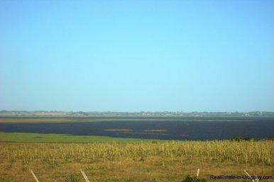 3990-Magnificent-Land-with-Lagoon-Views-close-to-Jose-Ignacio-2479