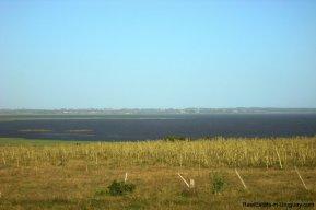 3990-Magnificent-Land-with-Lagoon-Views-close-to-Jose-Ignacio-2481