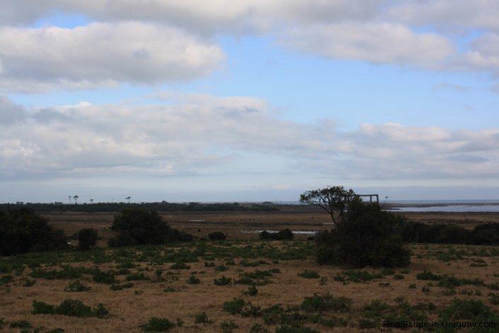 4934-A-Dream-on-the-Coast-with-Ocean-Views-2878